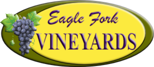 Eagle Fork Vineyards